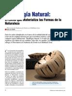 muebles_morfologia.pdf