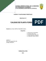 Informe Calidad Planta Bueno