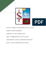 Monografia Gob de Rio de La Plata