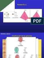 2.1.GluciLipidos