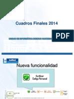 Presentación Cuadros Finales 2014 DINFO.pptx