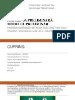 Amprenta Preliminara Si Modelul Preliminar_bodean