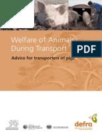 Welfare Animals