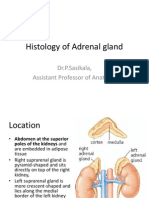Histology of Adrenal Gland