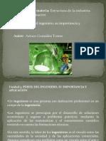 perfildelingeniero1-140901161512-phpapp02