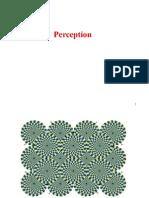 1 Perception