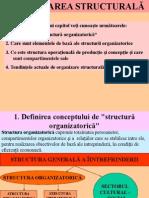 Structura organizatorica a persoanei juridice cu scop lucrativ