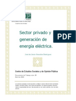 Sector Privado Energia Electrica