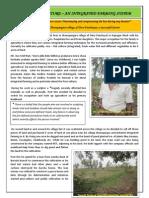 Case Study Rice & Fish (Ashok Das), Jyoti