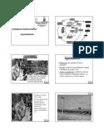 Clase04.2010Entrada_en_receso_invernal_de_las_vides.pdf
