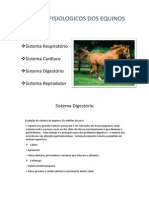 Sistemas Fisiologicos Dos Equinos