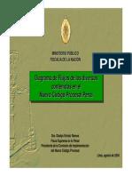 esquem del NCPP..pdf