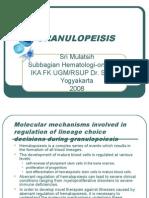 GRANULOPEISIS.ppt