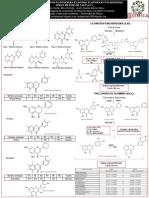 Poster determinación de Flavonoides