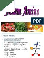 asam amino.ppt
