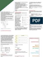 División de Polinomios-tríptico