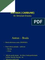 c12.1 Antrax ( Carbune) 01
