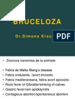 C15.1 Bruceloza 01
