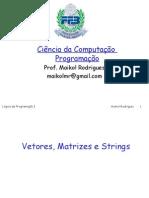 Aula 5 - Vetores, Matrizes e Strings-FFB