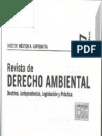 PINTO_Derecho a La Información Ambiental_El Estado Ignorante_RDA37