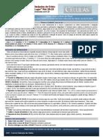 Kit Célula 09-11-2014 - AP. Nilson