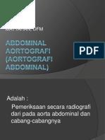 Abdominal Aortografi