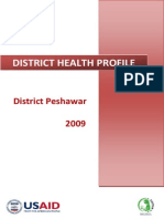 District Health Profile Peshawar