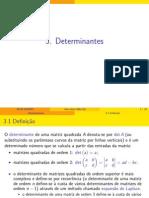 III Determinantes