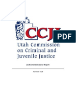 CCJJ Justice Reinvestment Report