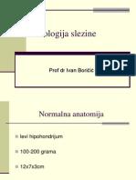 Patologija sl