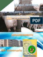 Los Problemas Entericos - Junio 2011- Fcv-luz