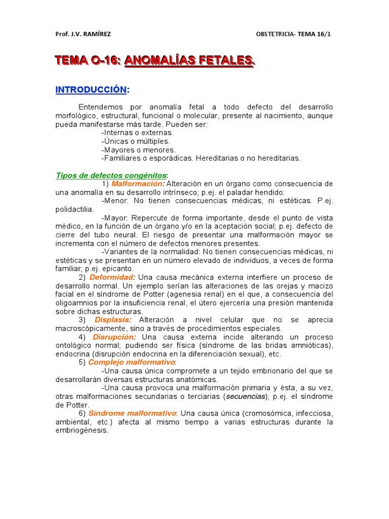 TEMA O-16.pdf