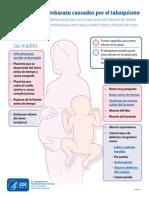 Afiche Riesgos Embarazo Tabaquismo