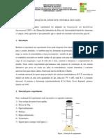Roteiro de Experimento-Determinação Da Constante Universal Dos Gases Perfeitos