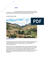 La Agricultura en La Sierra