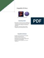 Virus Hepatitis B