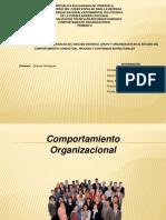 Comportamiento Organizacional DIAP. (2)