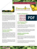 Bergamonte Brochure 2-2014