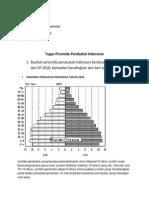 Piramida Penduduk Indonesia Tahun 2000