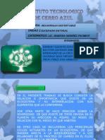Unidad 2 Desarrolo Sustentable Completo
