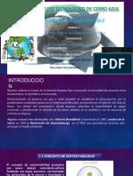 desarrollo sustentable.pptx