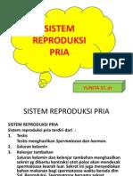 5.6.Sistm Reproduksi Pria