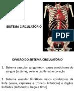 Aula 5 - Sistema Circulatório