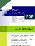 JALUR GLIOKSILAT