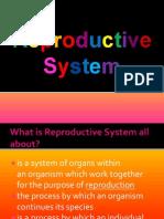 Anatomy of Reproductive health