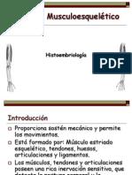 1. Histoembriología Del Sistema Musculoesquelético Modif