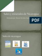 Sales y Minerales de Nicaragua