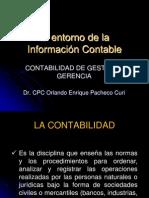 Entorno de La Informacion Contable