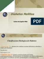 Diabetes Mellitus 2010