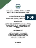 Monografía Estrategias Metodológicas Para El Desarrollo de La Lecto-escritura en Niños y Niñas Con SD